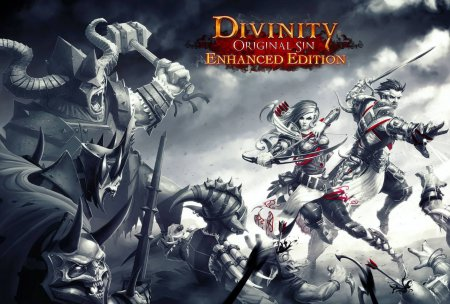 Divinity: Original Sin - Enhanced Edition (2015) PC | Repack