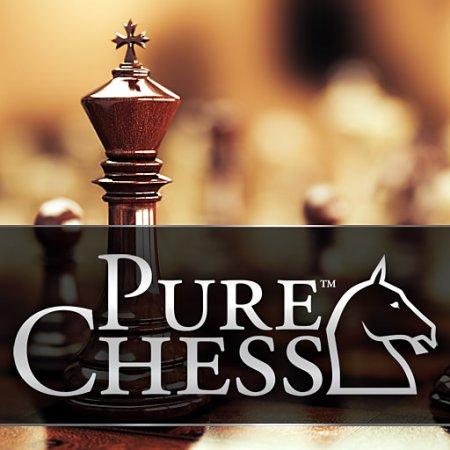 Pure Chess: Grandmaster Edition (2016) скачать логические игры | Repack