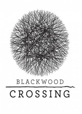 Blackwood Crossing (2017) скачать игры бродилки